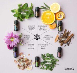 doterra emotional aromatherapy